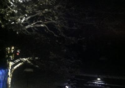 Laurel Lane, Valley View, Ohio – Outdoor Lighting Contractor Baron Landscaping