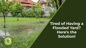 Tired of Having a Flooded Yard? Here's the Solution!