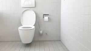 Low Flush Toilets